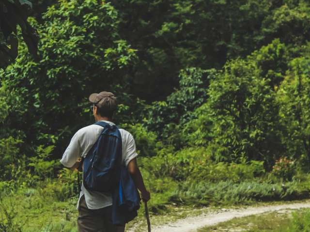 A man walks on a wooded path using a hiking stick.