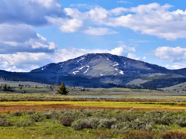 A scenic view of mountain and grassy field in Montana.