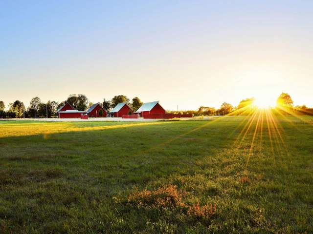 Sunrise over a green field with several red barns on the horizon.