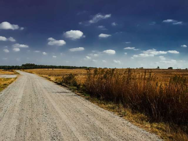 A dirt road leads off into the distance through rural farmland.