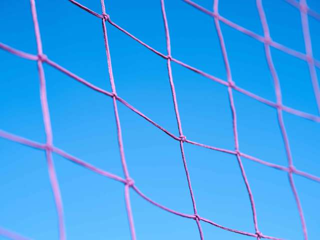 A purple volleyball net as seen on a sunny day.