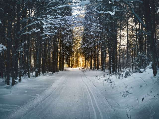 A beautiful snowy landscape with a snow-covered road cutting through a forest.