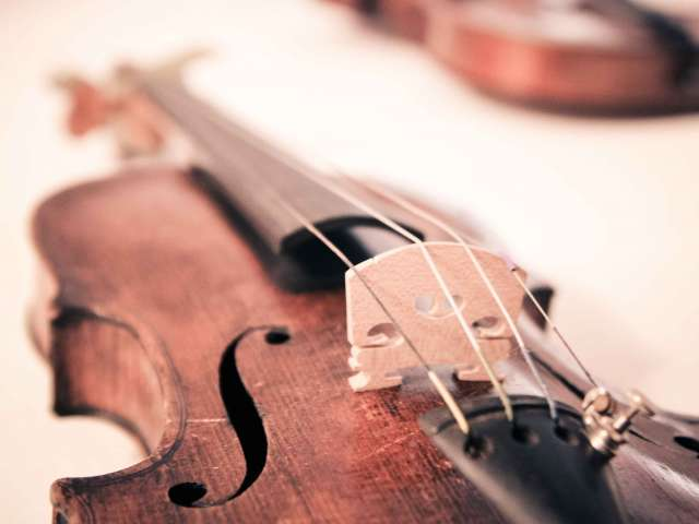A close-up view of a worn violin and its strings.
