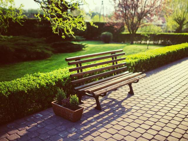 A wood and metal bench in a park-like setting on a sunny summer day.