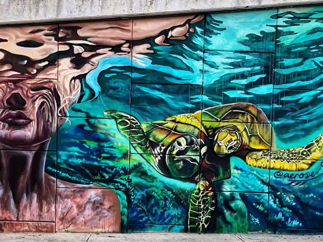 A colorful street mural showing a turtle swimming next to a woman underwater.