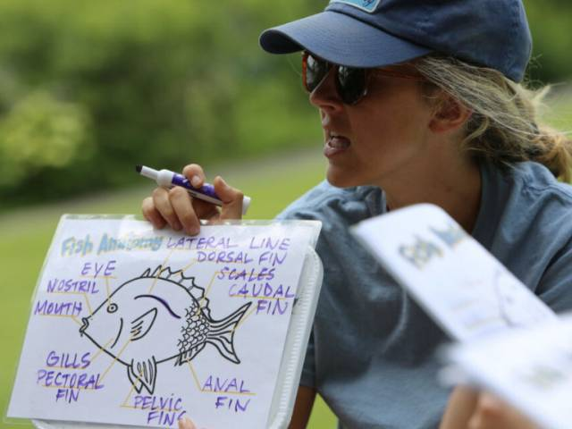 A woman with blonde hair and a blue baseball cap holds up a drawing of a fish.
