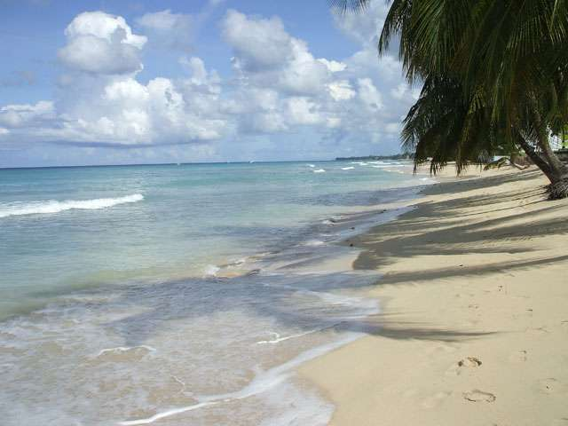 The beach in Barbados. Courtesy of the storyteller.