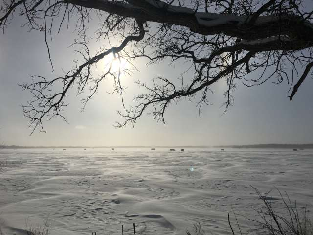A frozen lake in Minnesota