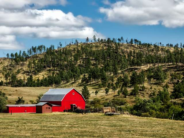 Photo of a red barn on a farm with pines in the background. Pexels stock photo.
