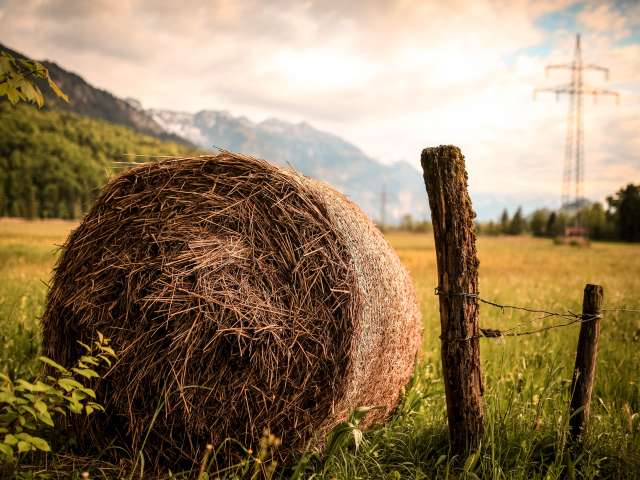 A rolled bale of hay sits in a picturesque field with mountains in the background. Pexels stock photo