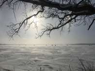 A frozen lake in Minnesota